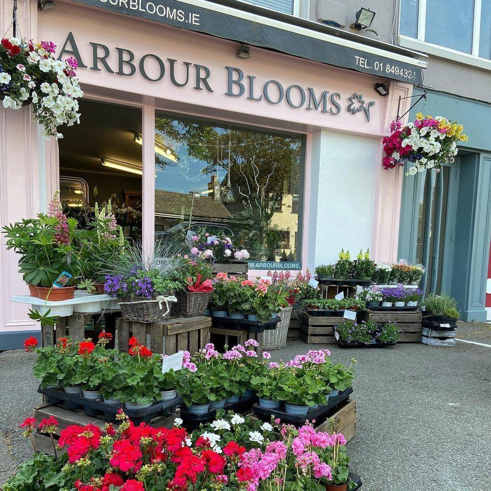 Arbour Blooms Skerries