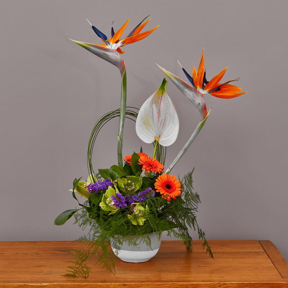 Strelitzia Arrangement Arbour Blooms