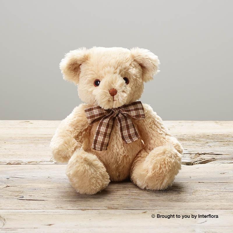 Lg Null James Junior Bear.jpg