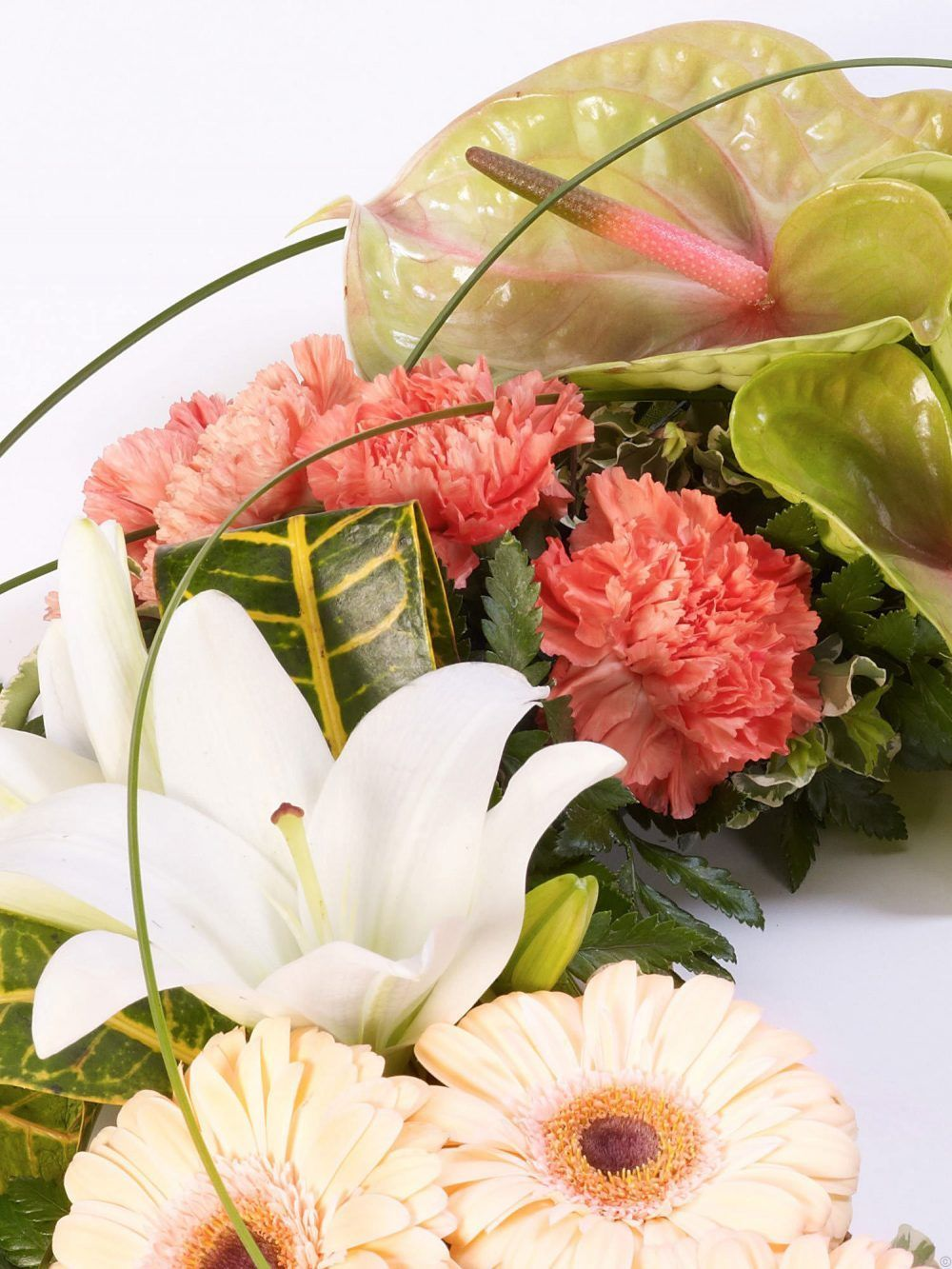Exotic Wreath 1